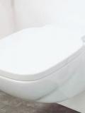 WC  SPRINT
